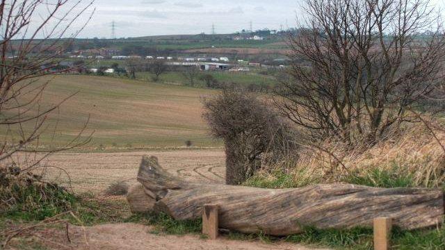 Dog walk at Summerhill