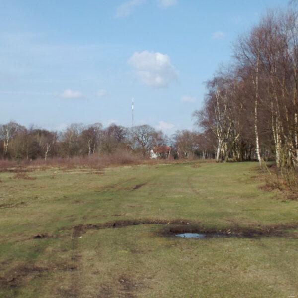 Sutton Park photo 1