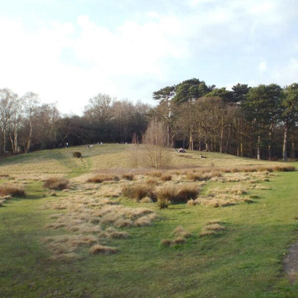 Sutton Park photo 2