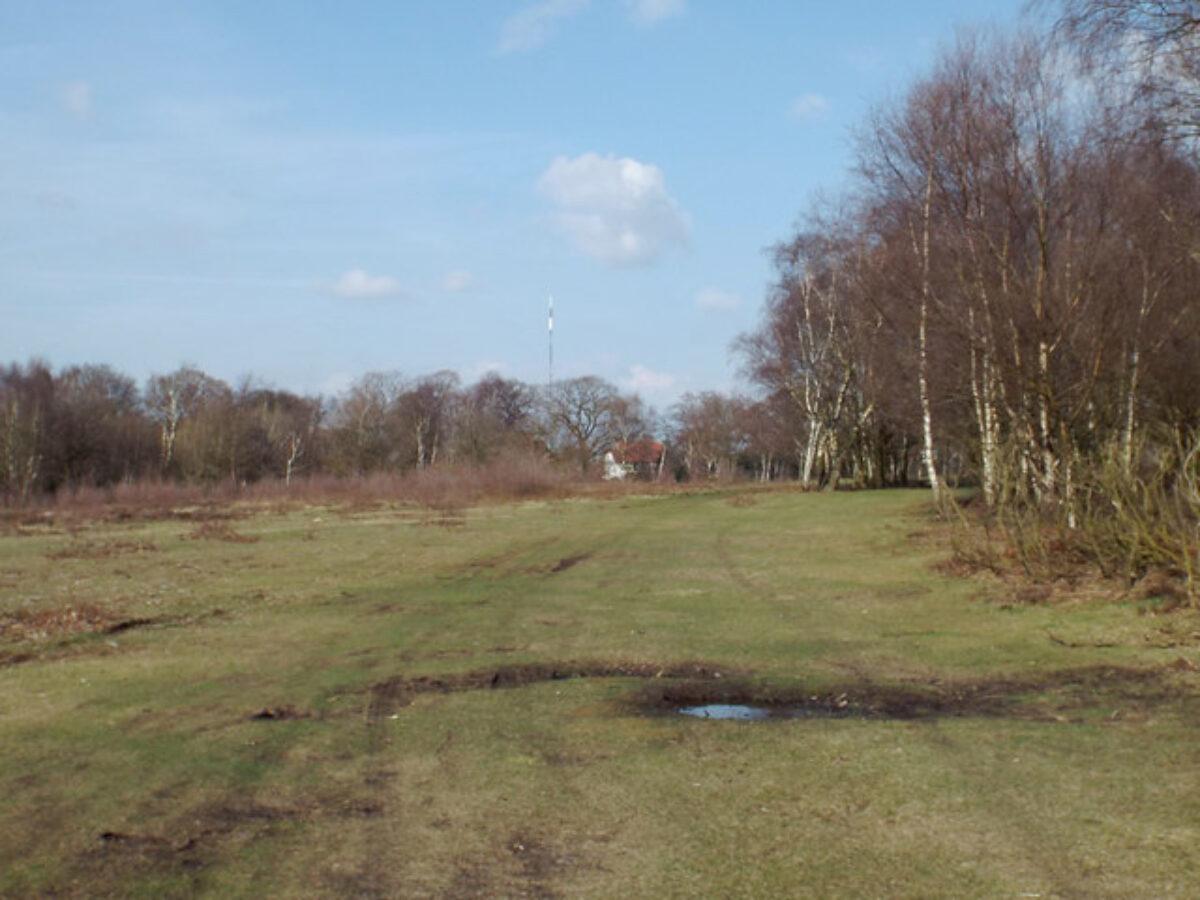 Sutton Park large photo 1
