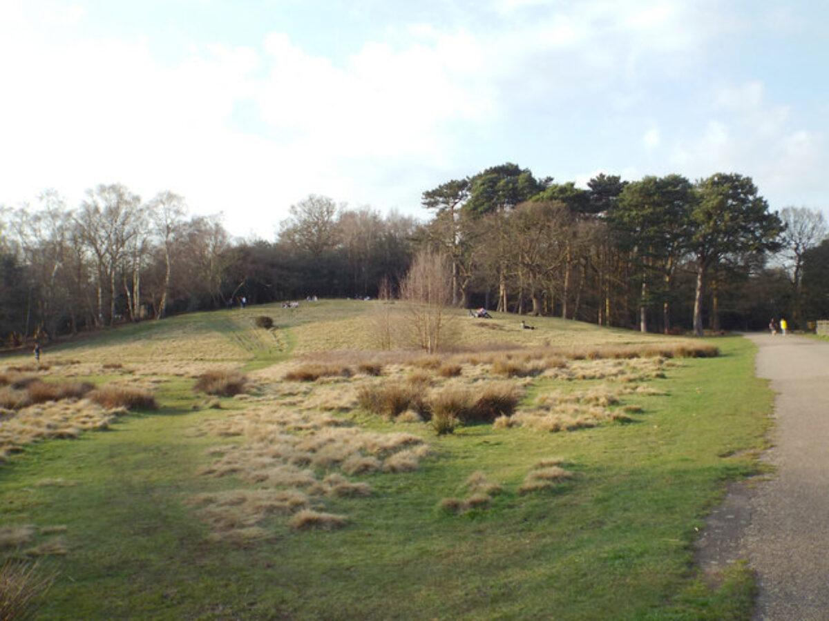 Sutton Park large photo 2