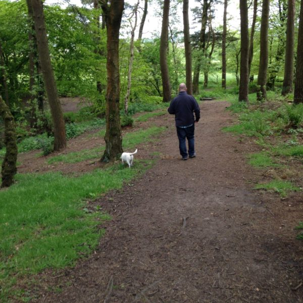 Dog walk at Tandle Hill National Park