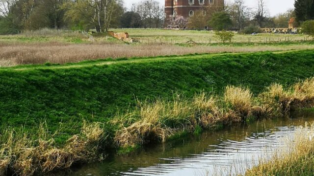 Dog walk at Tattershall Castle Heritage Trail