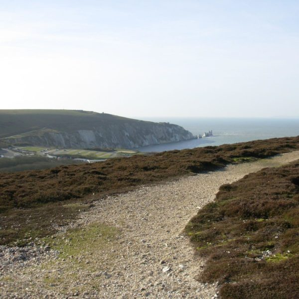 Dog walk at Tennyson Down And Headon Warren