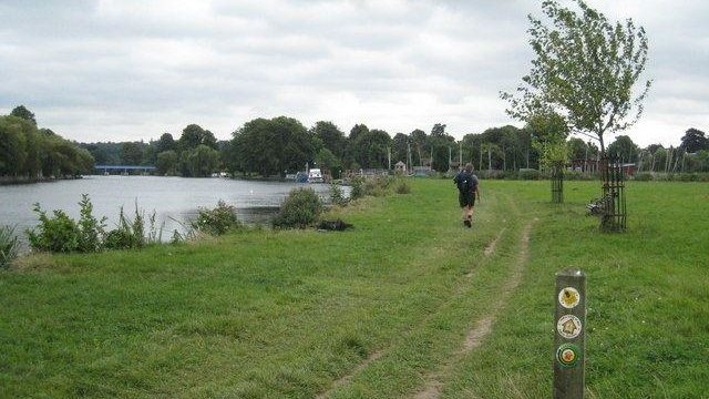 Dog walk at Thames Path - Cookham