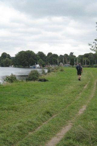 Dog walk at Thames Path - Cookham photo