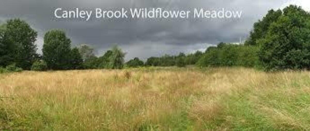 The Canley Woodlands (Park Wood & Ten Shilling Wood) large photo 3