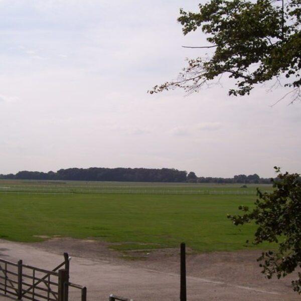 The Knavesmire (York Racecourse) photo 2