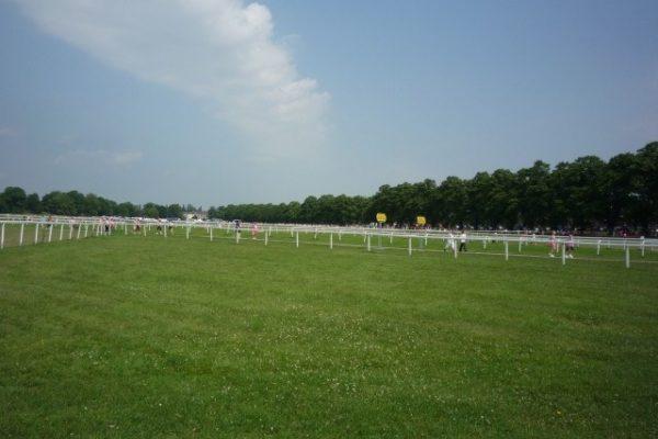 The Knavesmire (York Racecourse)photo