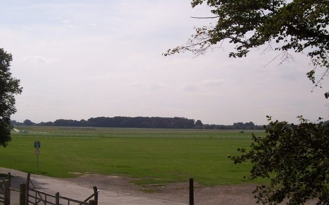 The Knavesmire (York Racecourse) Dog walk in Yorkshire (North)