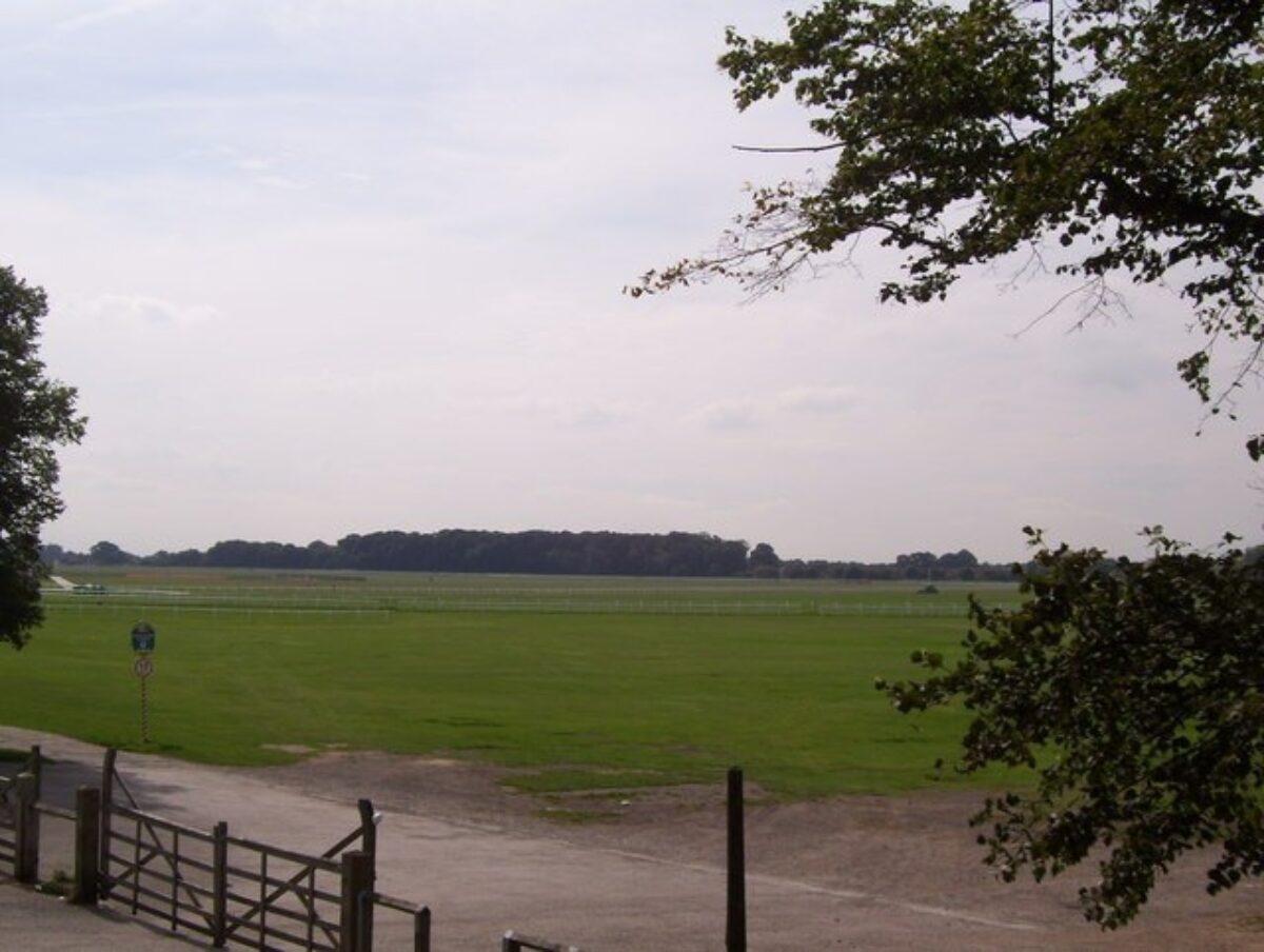 The Knavesmire (York Racecourse) large photo 2