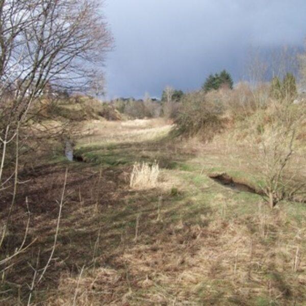 The Laigh Hills Park photo 1