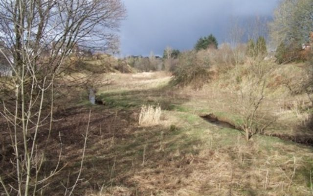The Laigh Hills Park Dog walk in Stirlingshire