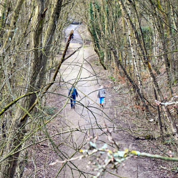 Dog walk at The Loopline, Tyldesley