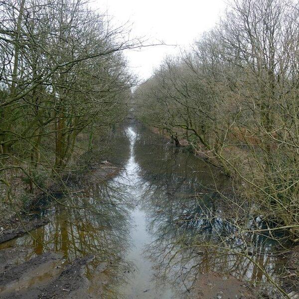 The Loopline, Tyldesley photo 2