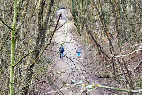 The Loopline, Tyldesleyphoto