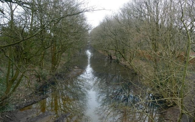 The Loopline, Tyldesley Dog walk in Manchester (Greater)