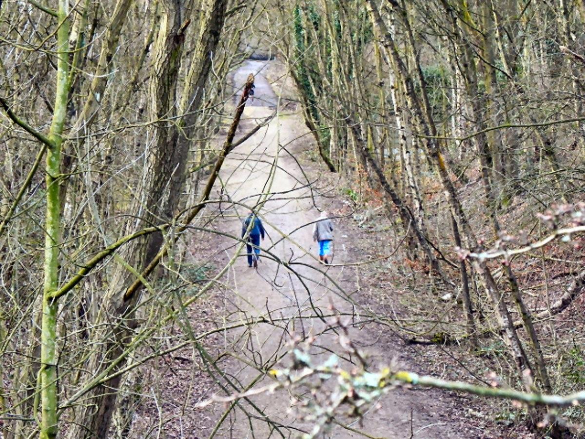 The Loopline, Tyldesley large photo 1