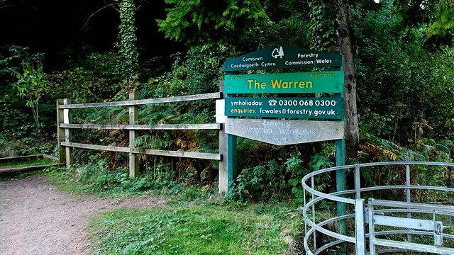 Dog walk at The Warren
