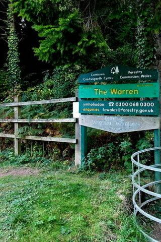 Dog walk at The Warren photo