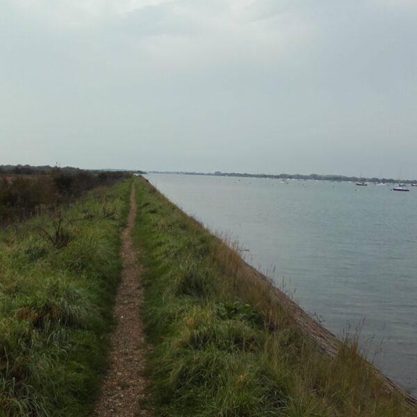 Thorney Island Shoreline Walk photo 1