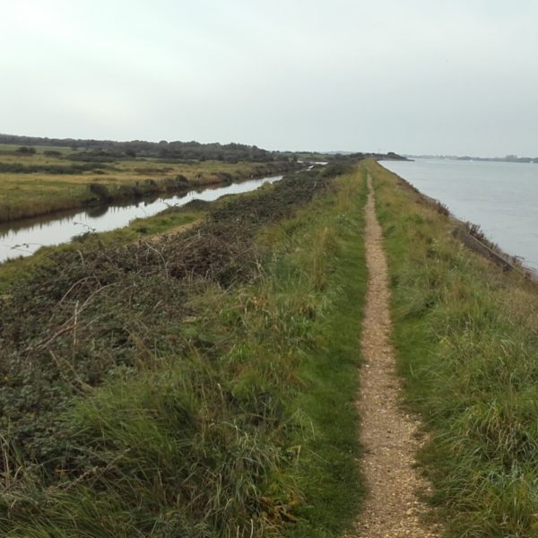 Thorney Island Shoreline Walk photo 3