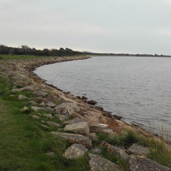 Thorney Island Shoreline Walk photo 5