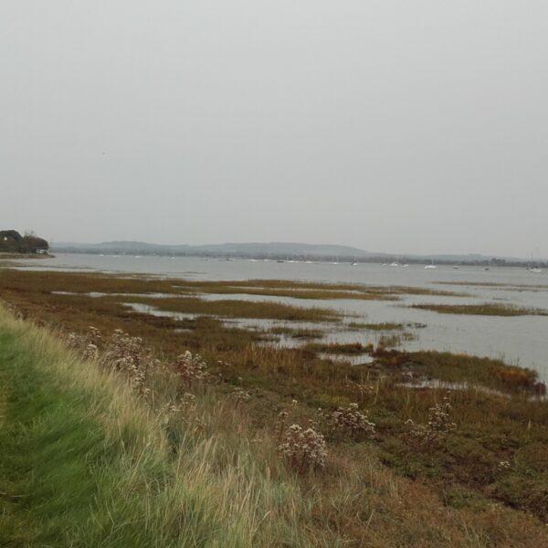 Thorney Island Shoreline Walk photo 6