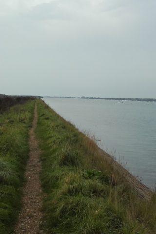 Dog walk at Thorney Island Shoreline Walk photo