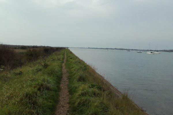 Thorney Island Shoreline Walkphoto