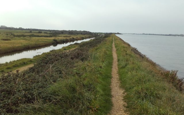 Thorney Island Shoreline Walk Dog walk in Hampshire
