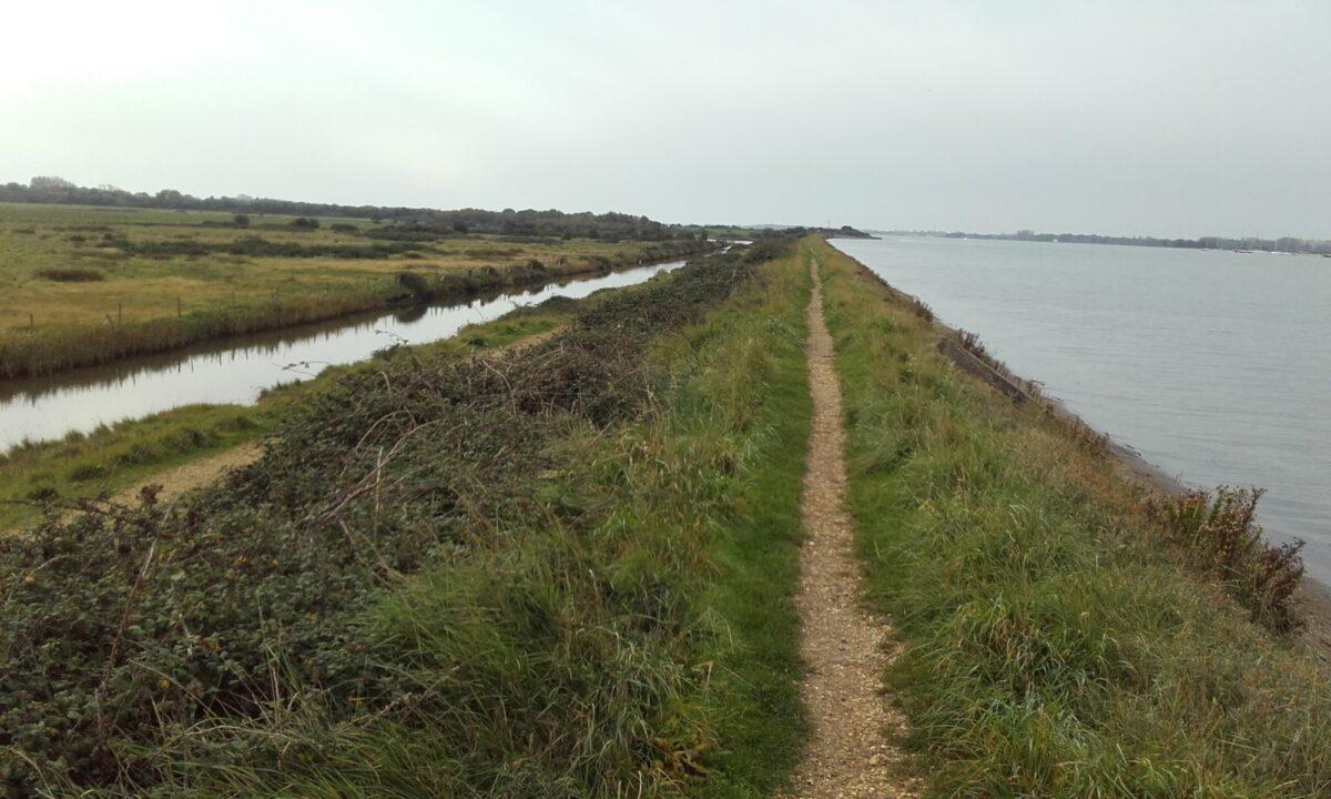 Thorney Island Shoreline Walk large photo 3