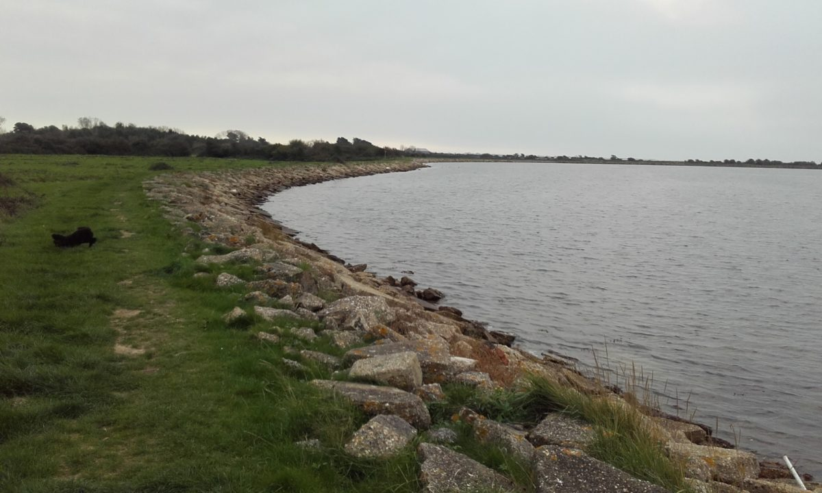 Thorney Island Shoreline Walk large photo 5