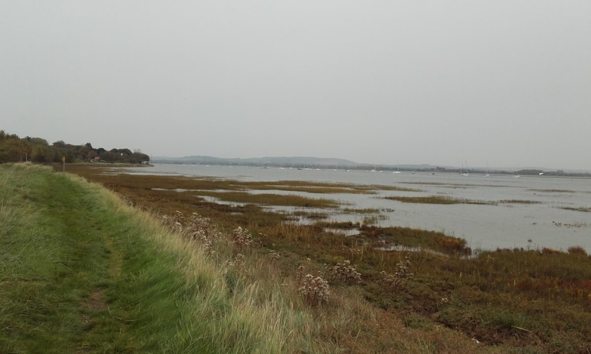 Thorney Island Shoreline Walk large photo 6