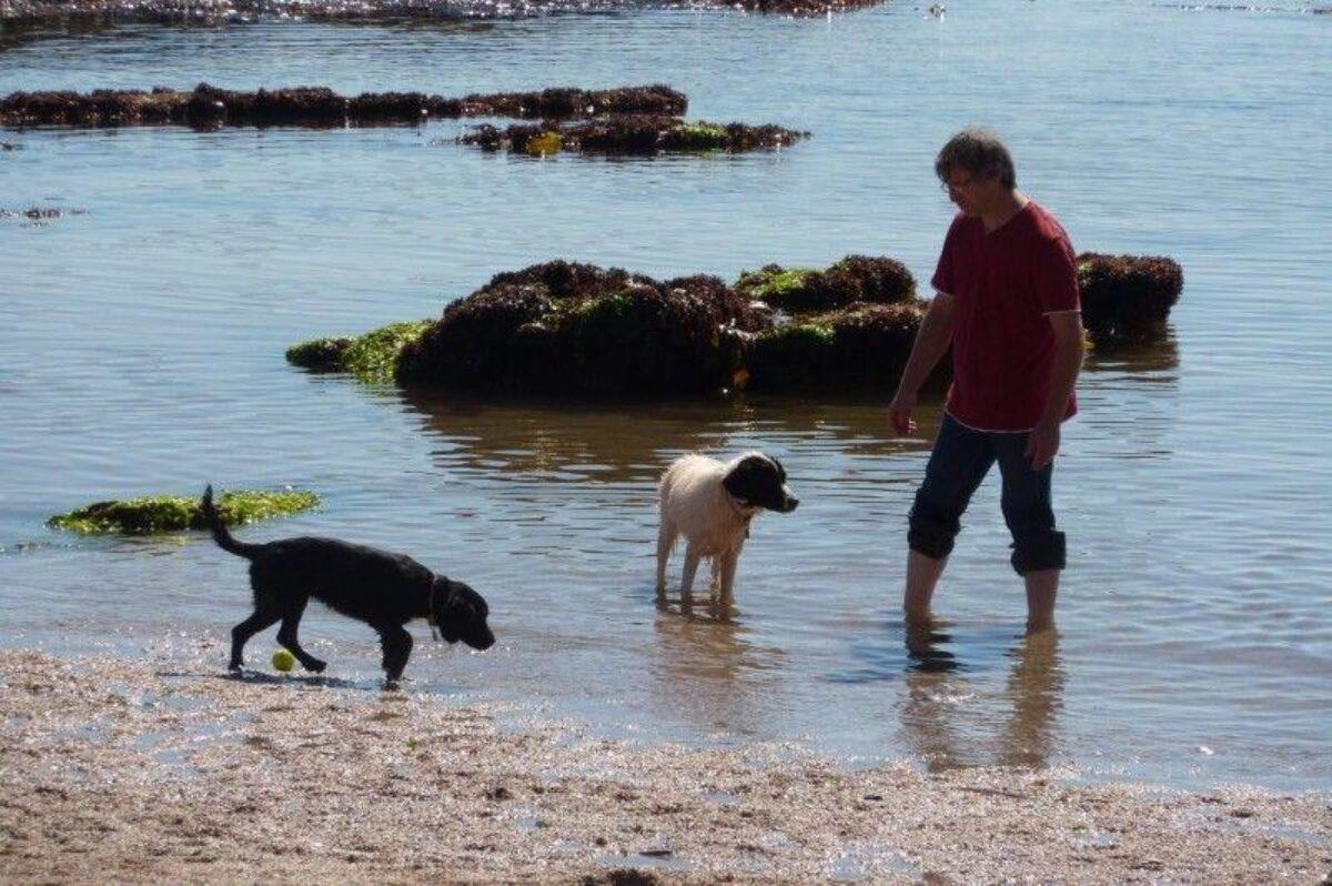 Thurlestone Beach large photo 7