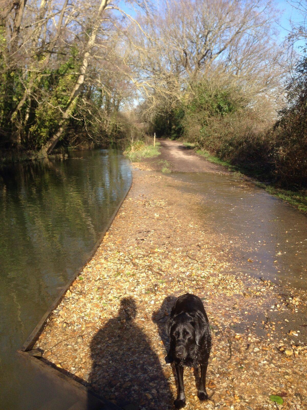 Titchfield Canal large photo 1