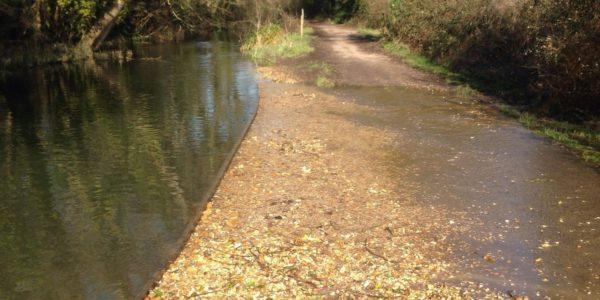 Titchfield Canal