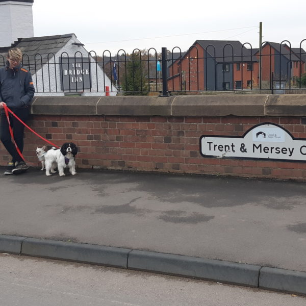 Trent & Mersey Canal Path (Burton) photo 6