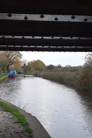 Dog walk at Trent & Mersey Canal Path (Burton) photo