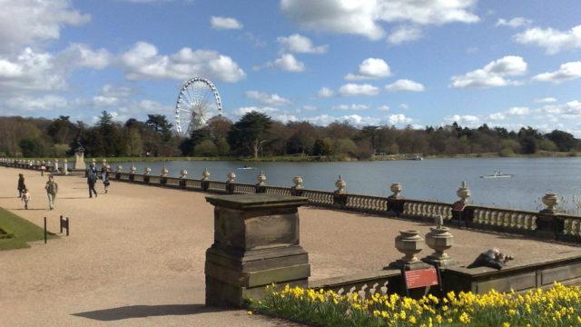 Dog walk at Trentham Gardens