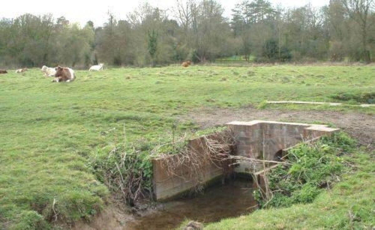 Twyford / Shawford Water Meadows large photo 1