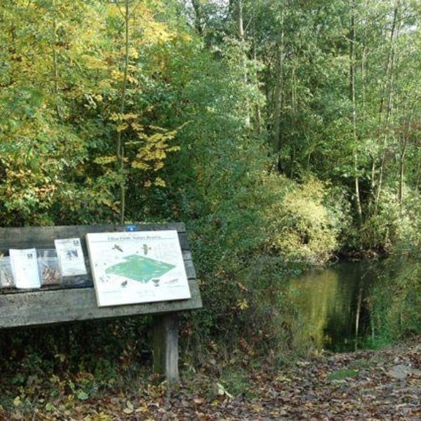 Ufton Fields Nature Reserve photo 5