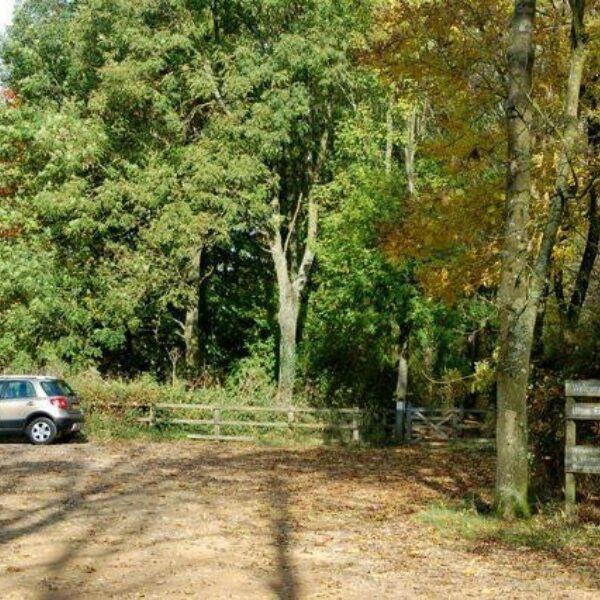 Ufton Fields Nature Reserve photo 6
