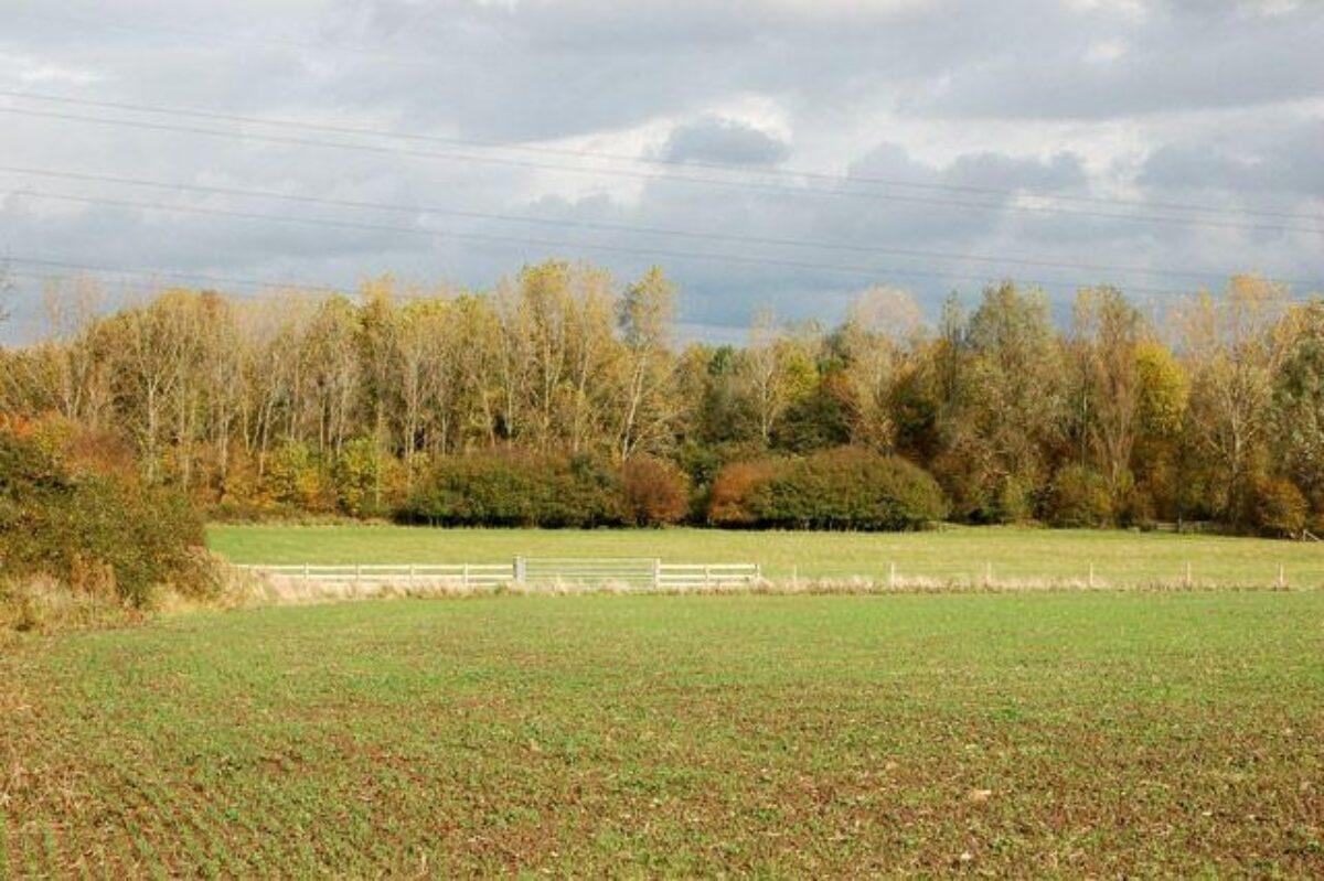 Ufton Fields Nature Reserve large photo 4