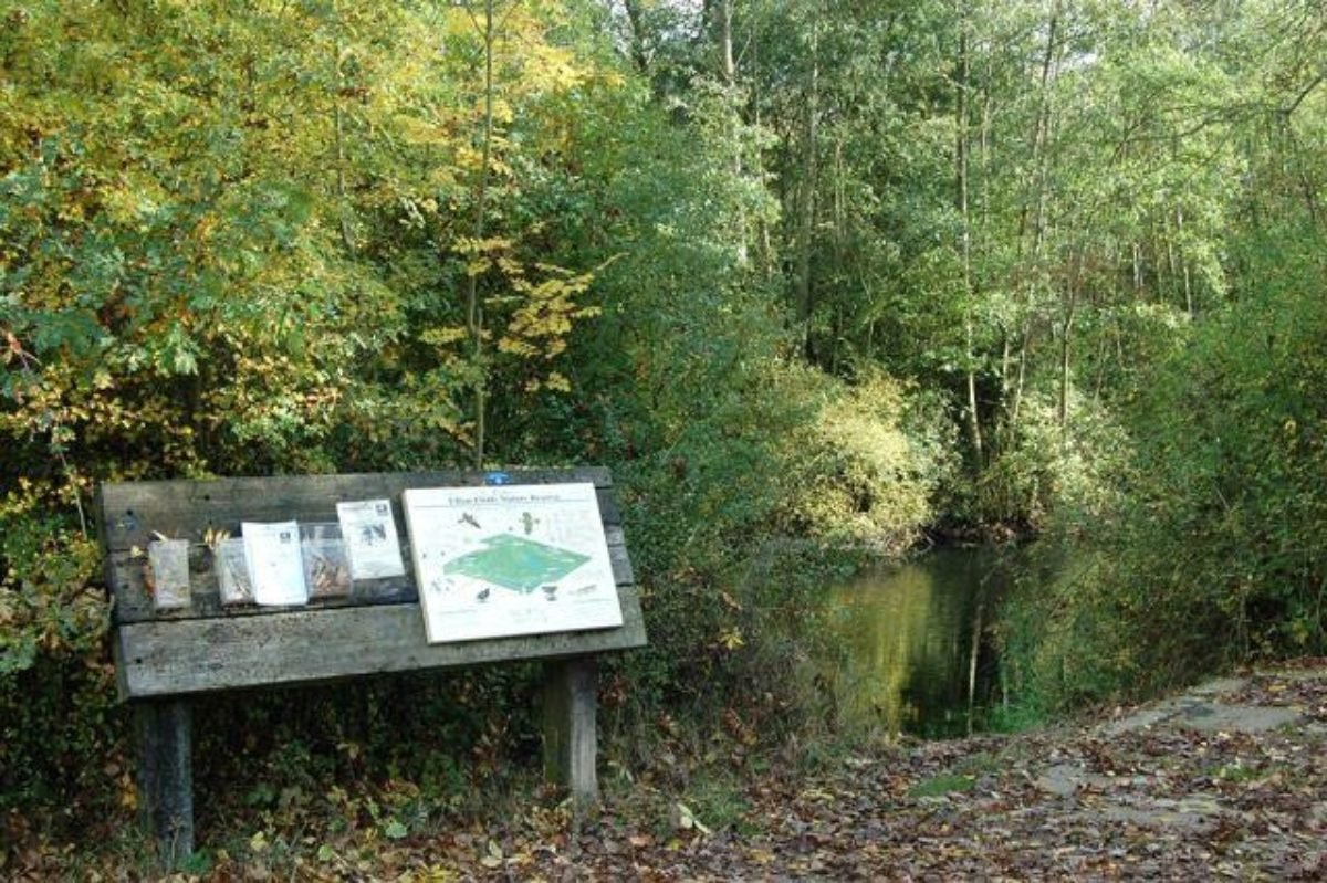 Ufton Fields Nature Reserve large photo 5