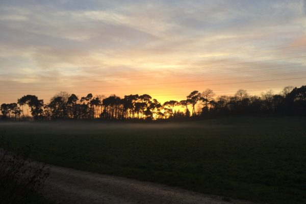 Upton Country Parkphoto