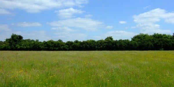 Back River, Stanground, Peterborough