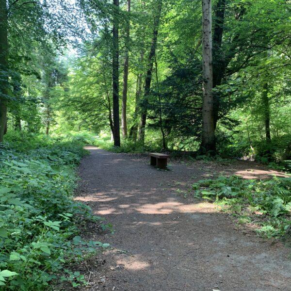 Valleyfield Woodland Park photo 4