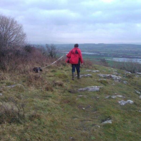 Warton Crag photo 1