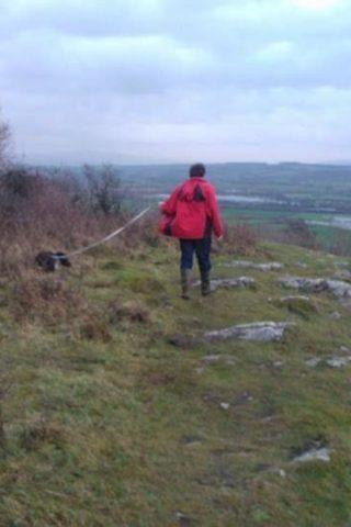 Dog walk at Warton Crag photo